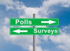 Polls & Surveys