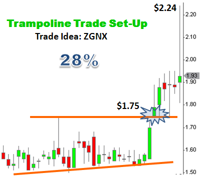 Trade idea ZGNX