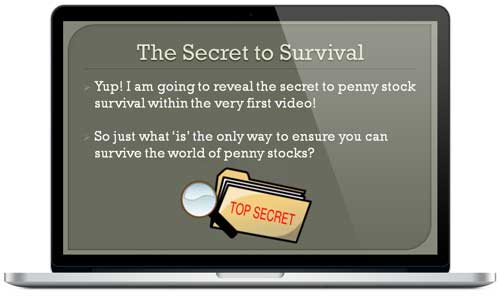 Penny Stock Survival Guide Sample
