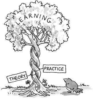 Options Theory to Reality - Tree