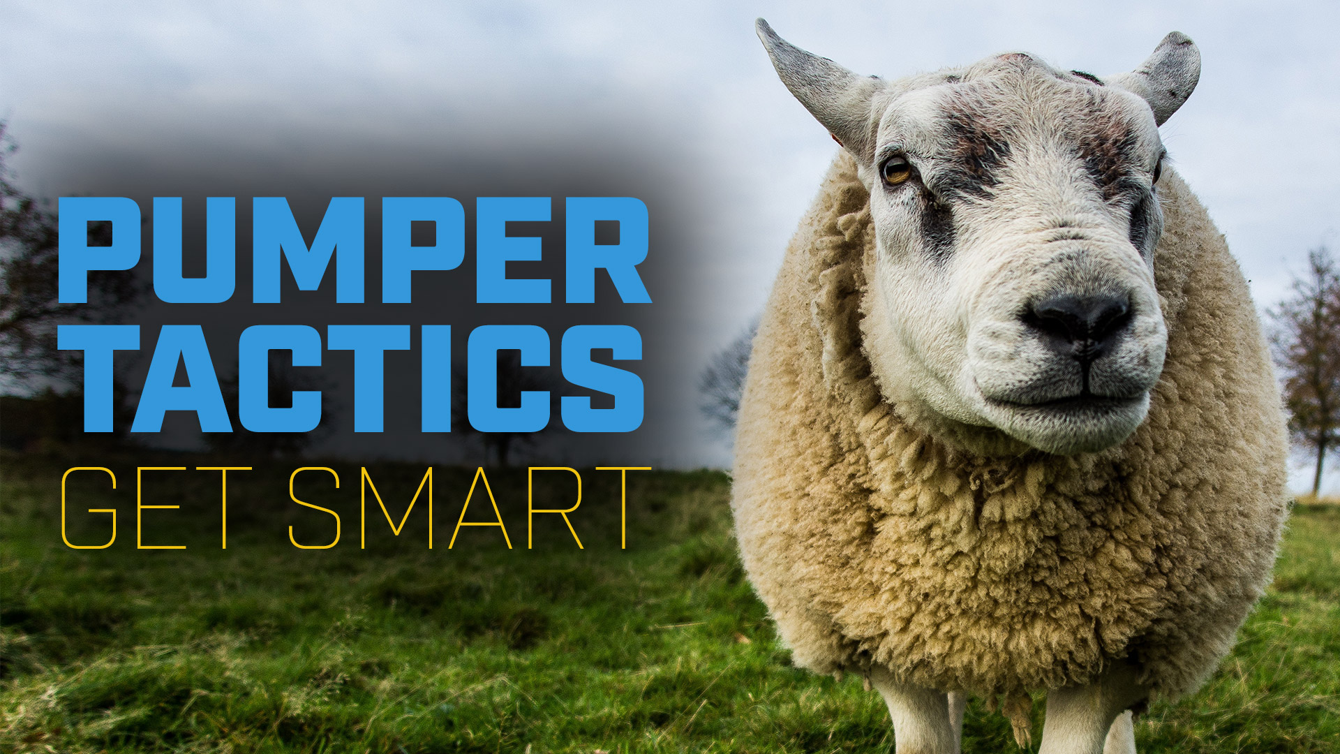 Pumper Tactics. Get Smart!
