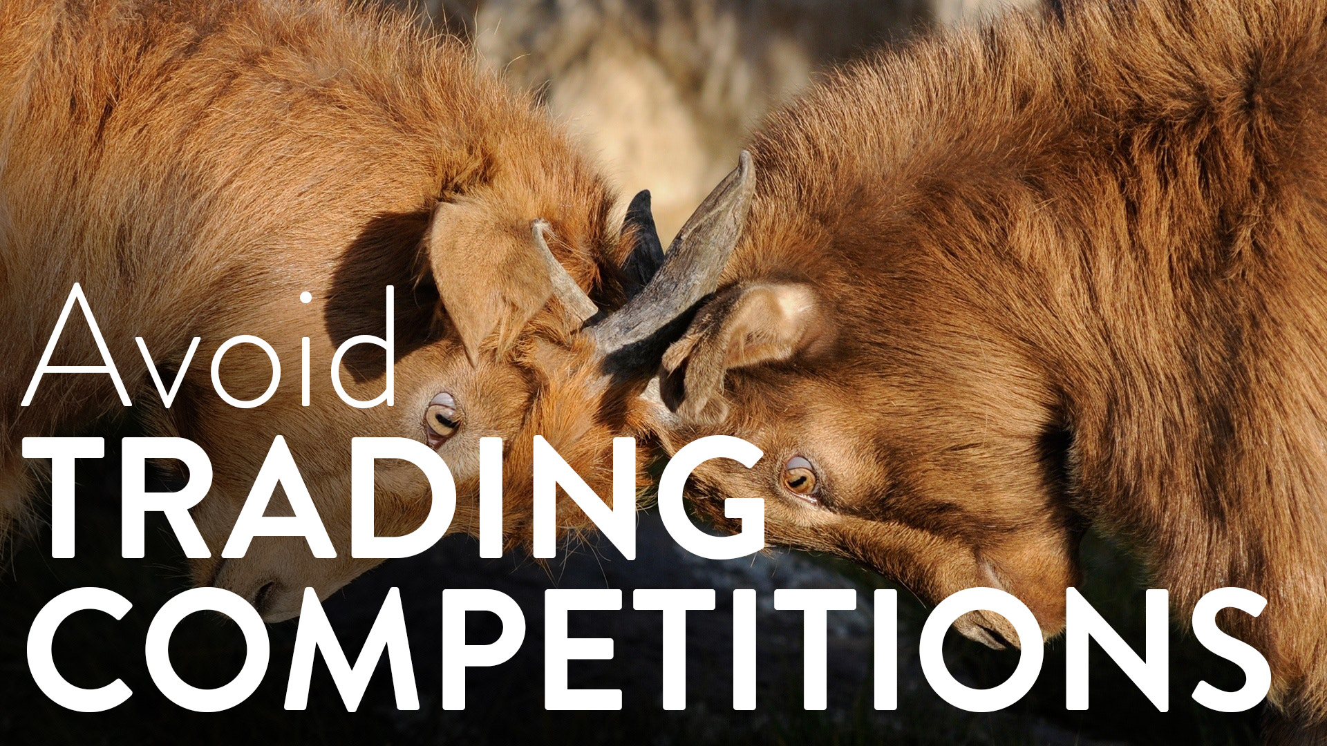 Avoid Trading Competitions