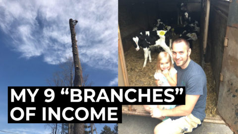 How I Make Money: My 9 Streams of Income (including cows!)