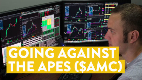 [LIVE] Day Trading | I Go Against the Apes (and $AMC) to Make Money...